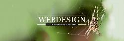 Afbeelding › Le Tigre Webdesign Holland